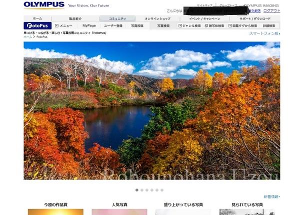 FOTOPUS.jpg